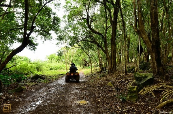 Quad Biking Mauritius - Domaine de Rambouillet